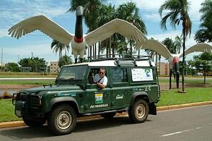 Alexandre e o Talha-mato comunhando com os tutuius do aeroporto de Campo Grande