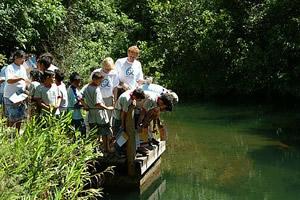 Gerard e Margi com as crianças olhando o Córrego desbarrancado