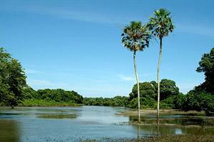 O rio Aquidauana passando pela fazenda Retirinho