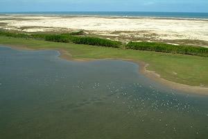 Aquarela da Lagoa do Peixe e o Atlântico Sul
