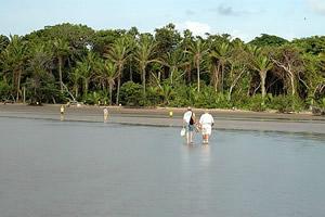 Praia do Urubu, ilha Mexiana, na Linha do Equador