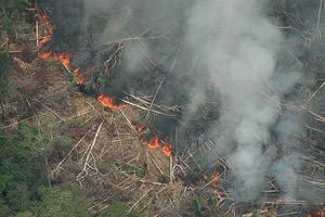 As queimadas, responsáveis pela densa fumaça que cobre a região nessa época do ano