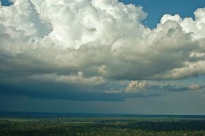 Bela nuvem carregada de chuva acima da floresta no Acre. Foto Margi Moss