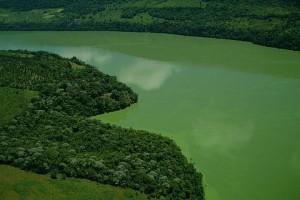As águas esverdeadas da represa Foz do Areia (PR) - Foto: Margi Moss