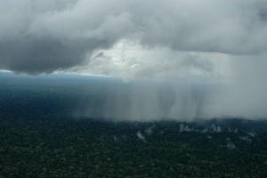 Chuva no extremo oeste do Brasil, o Parque Nacional da Serra do Divisor - Foto: Margi Moss
