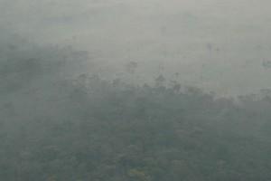 A visibilidade prejudicada pela fumaça densa perto de Sinop-MT - Foto: Margi Moss