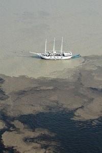 O Encontro das Águas (o Solimões com o Negro) próximo a Manaus - Foto: Margi Moss