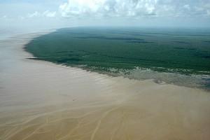 Cabo Orange,extremo norte da costa brasileira - Foto: Margi Moss