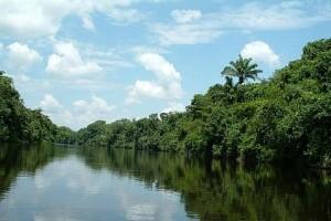 10/11/2003 Subindo o puríssimo rio Cristalino, MT - Foto: Margi Moss
